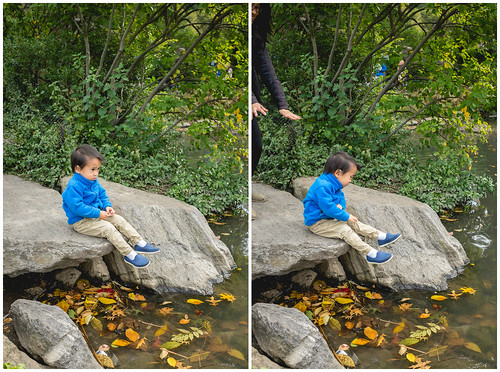 Sitting on a Rock in Central Park