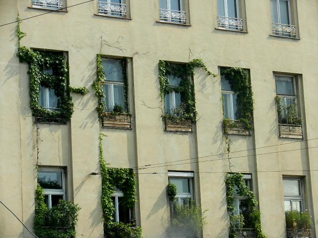 Wien_2013_9