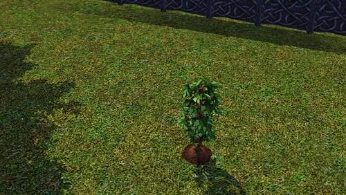 omniplant