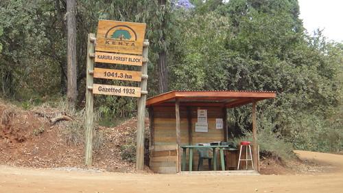 卡魯拉森林簡易的入口處。