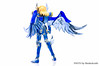 [Imagens] Saint Cloth Myth - Hyoga de Cisne Kamui 10th Anniversary Edition 11009078714_ff4dbeaa4b_t