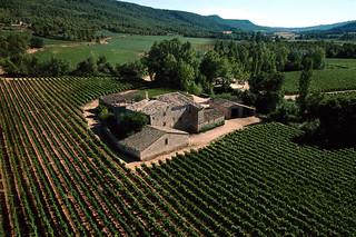 Detalle de una de las fincas y viñedos de Torres (Foto cortesía de las Bodegas).