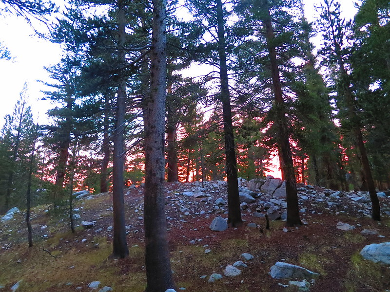 sunset in upper vidette meadow