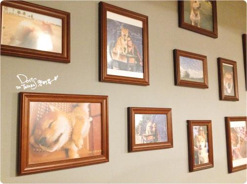 此木犬食堂10
