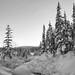 Deep Snow by yukonchris