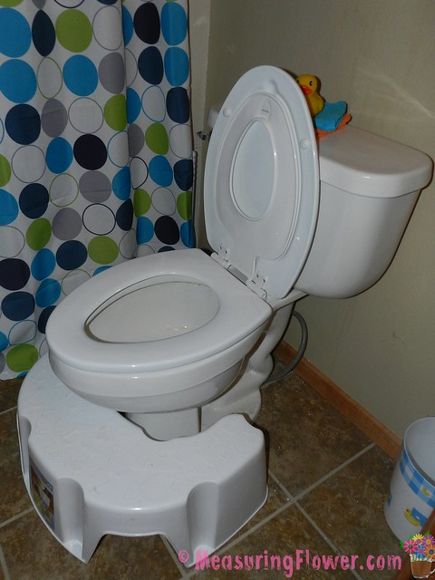 adult potty seat