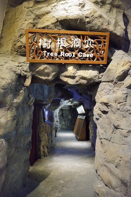 樹根洞穴展區