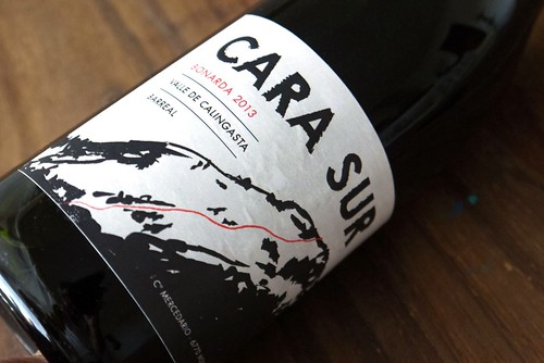 Cara+Sur+1[1]