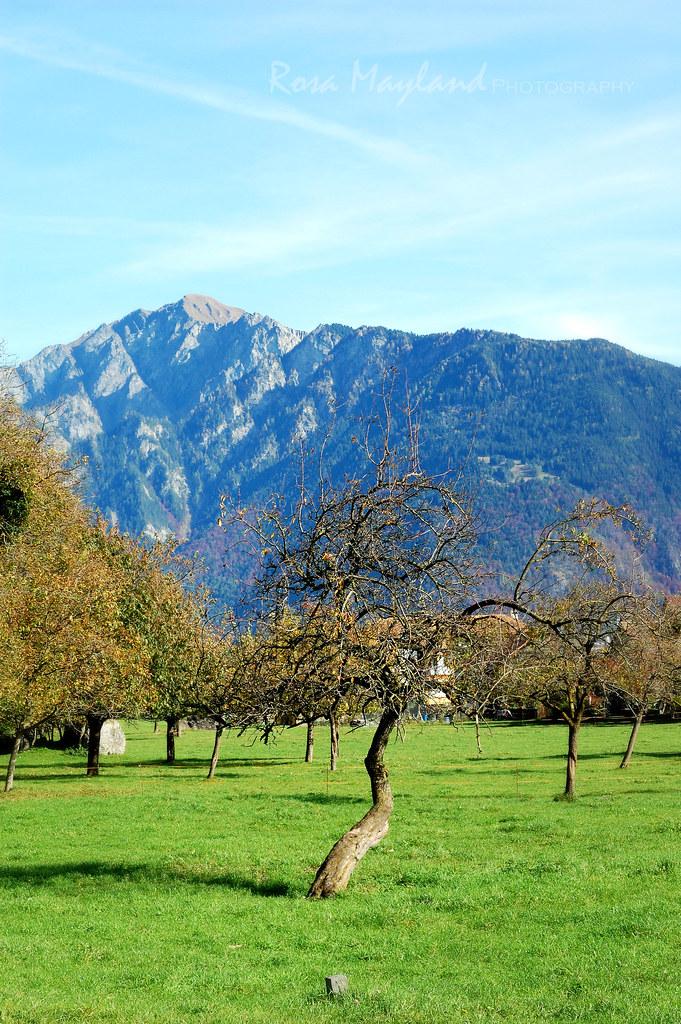 Felsberg, Graubünden Part III - October 2013