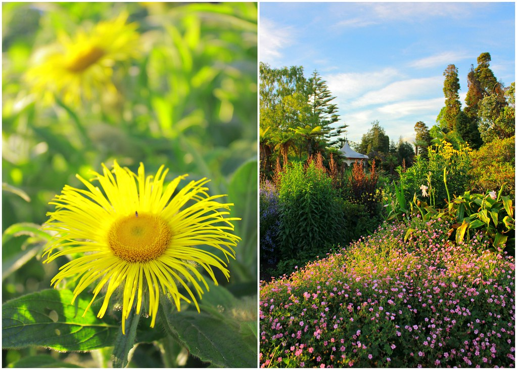 rotorua-government-garden-nz