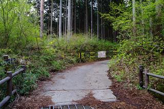 釜立林道の2個目のゲート・・・右手に5台程の駐車スペース