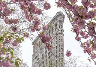 Springtime, New York