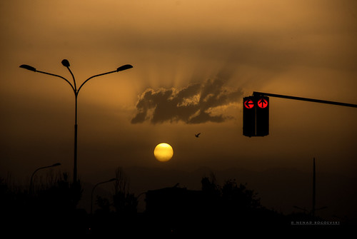 city light sunset shadow sun bird silhouette clouds golden trafficlight flying traffic sundown pigeon spots macedonia hour rays sunrays novo beams sunbeams aerodrom sunspots skopje lisice makedonia
