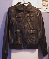 textile(1.0), leather jacket(1.0), clothing(1.0), collar(1.0), leather(1.0), outerwear(1.0), jacket(1.0),