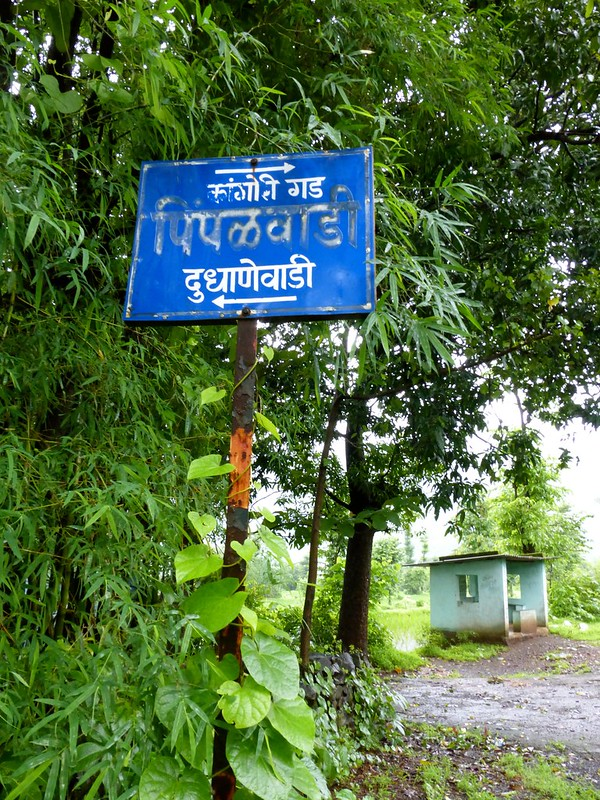 Kangorigad / Mangalgad Trek - Pimpalwadi