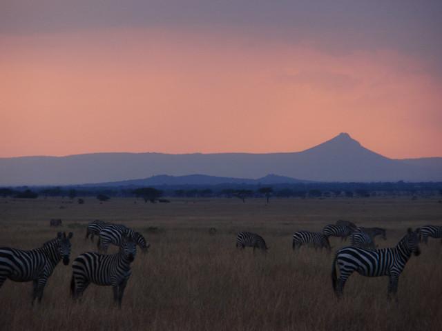 Africa_Tanzania_Grumetti_Reserves_5