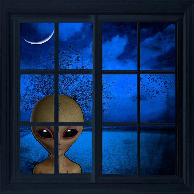 Header of Alien Intruder