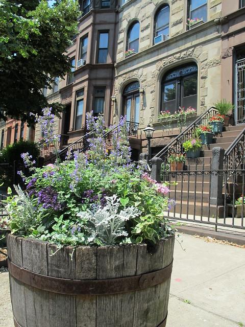 Bainbridge Street between Malcolm X Boulevard and Stuyvesant Avenue, Bedford-Stuyvesant