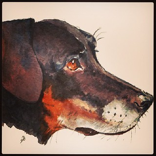 My baby girl in watercolor! Stay tuned to my blog for the review! #dobermanmix #love #adoptdontshop #rescue