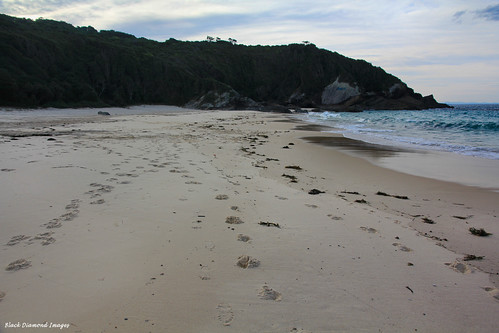 beach australia greatlakes nsw forster midnorthcoast australianbeaches bootibootinationalpark capehawke mcbridesbeach greatlakesbeaches mcbridesbeachtrack