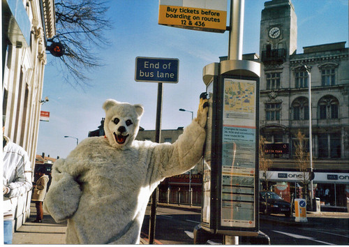 More of the Southwark polar bear