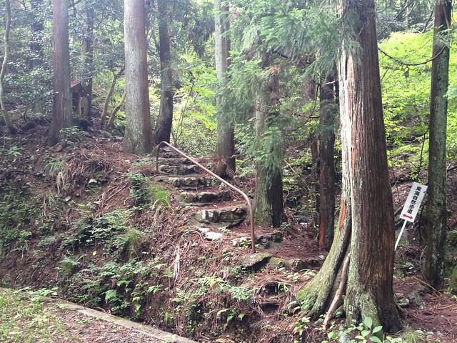 妙法ヶ岳 登山道