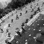 Semicircle Front Garden