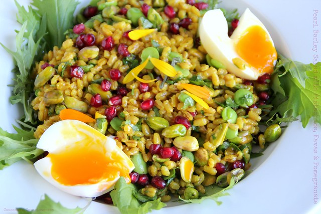 Pearl Barley Salad with Pistachios, Favas & Pomegranate 1