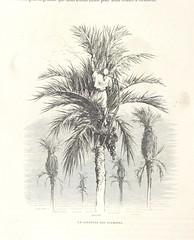 Image taken from page 126 of 'L'Espagne ... Illustrée de 309 gravures dessinées sur bois par Gustave Doré'