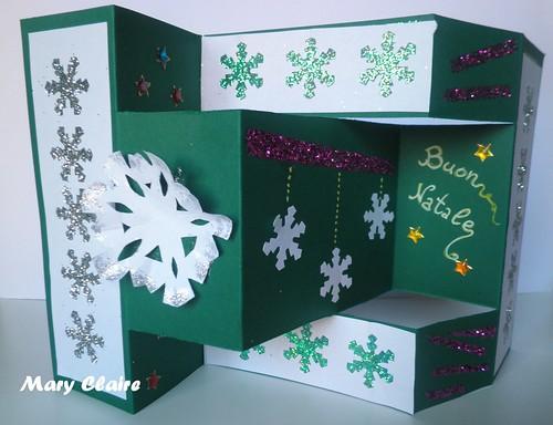 tri shutter card verde