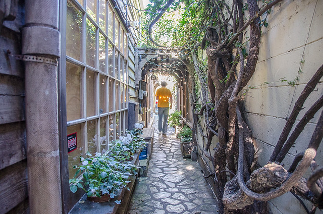 Secret Courtyards and Passageways - Dog Friendly Carmel