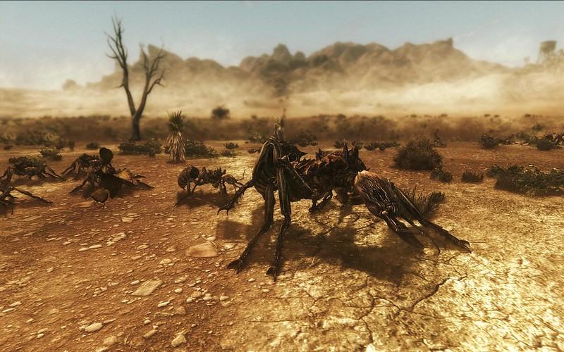 Fallout Screenshots XIV - Page 6 11428566804_42c60057a9_c