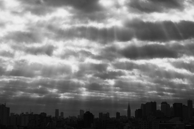 shower of light - in monochrome