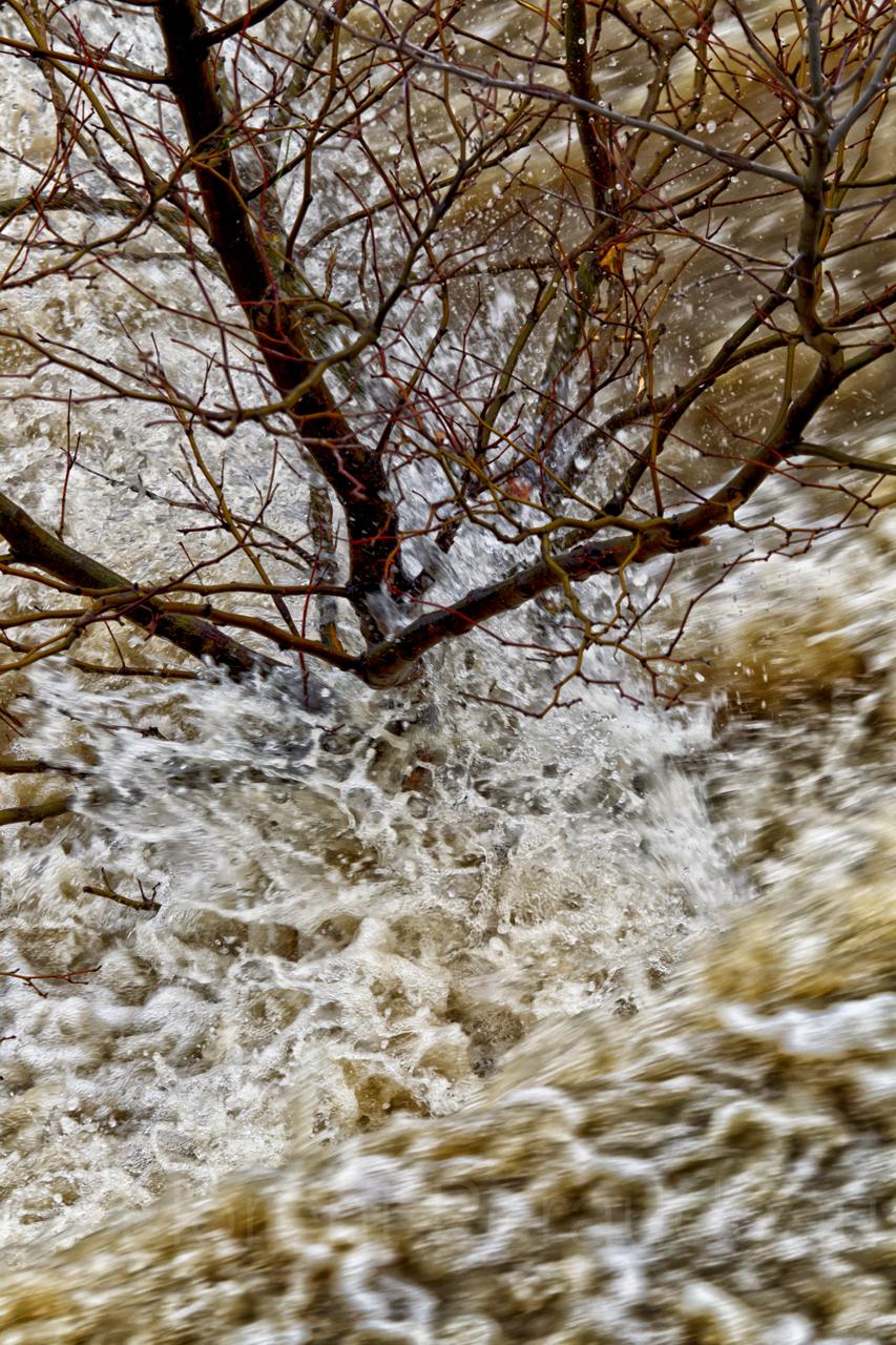 la Garonne en crue, 25 et 26 janvier 2014, Toulouse 12157036676_ed6fb4b392_o