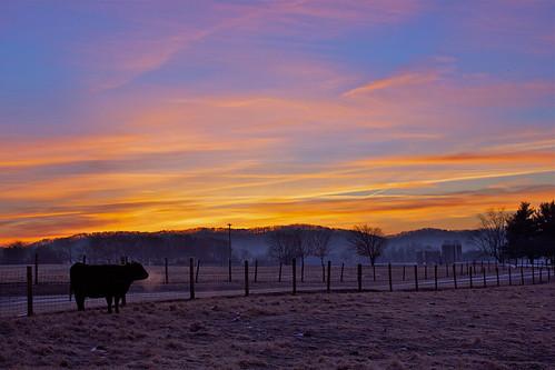 Blount Farm Sunrise