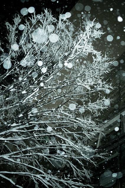 snowstorm at Yurakucho 03