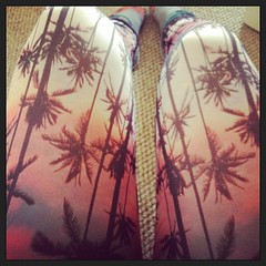 I have palm trees on my...