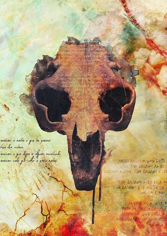 Crânio - Front