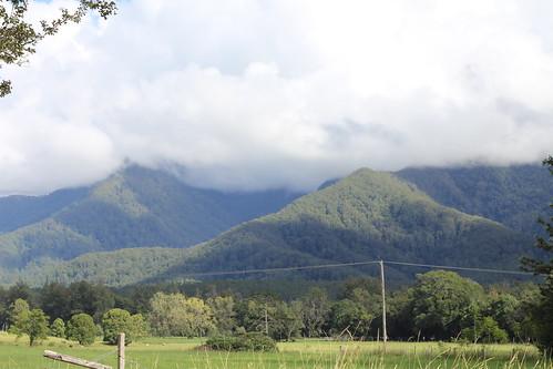 IMG 7784 Gleniffer Mountains