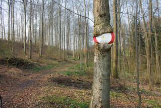 Die Natur holt sich alles zurück...