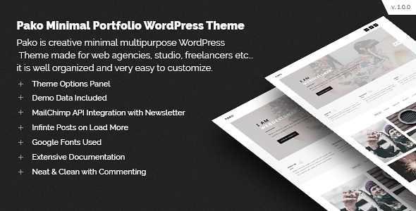 Pako WordPress Theme free download