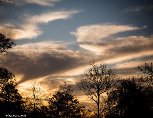 nature trees clouds sundown sunset