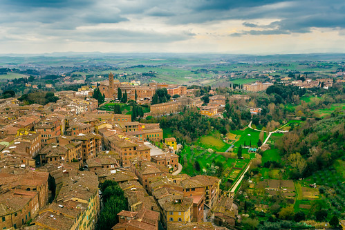 Landscape in oil, Siena | by Arutemu