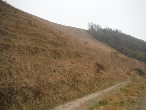 Battlesbury Hill from footpath at base