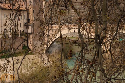 Dettaglio Isola Tiberina