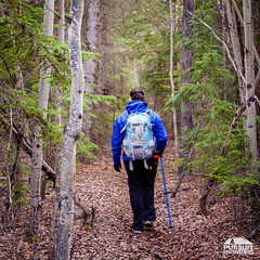Hiking to Survey Hill