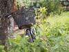 © Indonesia Bicycle Pushbike Samosir Island North Sumatra Southeast-Asia Sumatera Utara - Sepeda - Fahrrad Indonesien Südost-Asien Nord-Sumatra