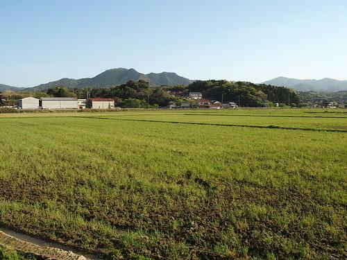 2017-04-19(16.29.45)東後町棚田
