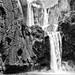 Ouzoud Falls, Morocco by Nikon in de Koken