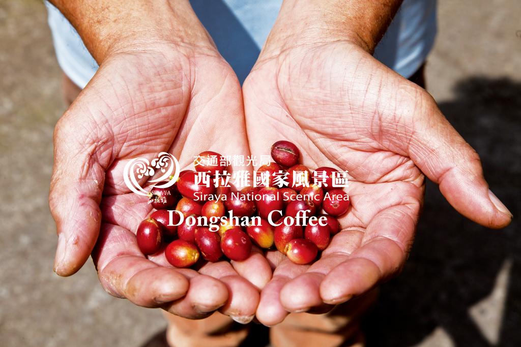 Dongshan Coffee 02